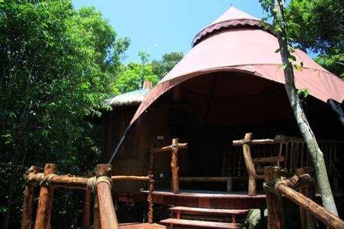 Earthly Paradise Bird Nest Resort 3