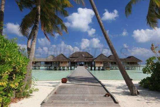 Gili Lankanfushi Maldives 3