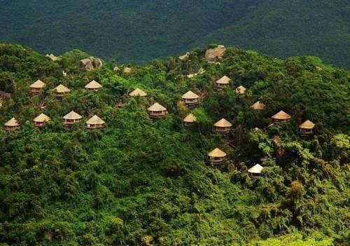 Earthly Paradise Bird Nest Resort 2