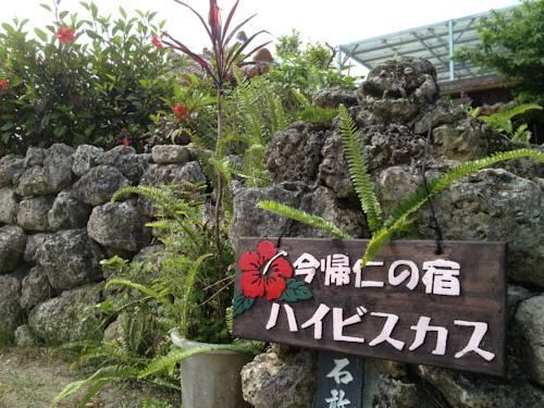 Nakijin no yado Hibiscus 2